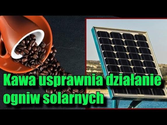 Kofeina zwiększa wydajność paneli słonecznych!