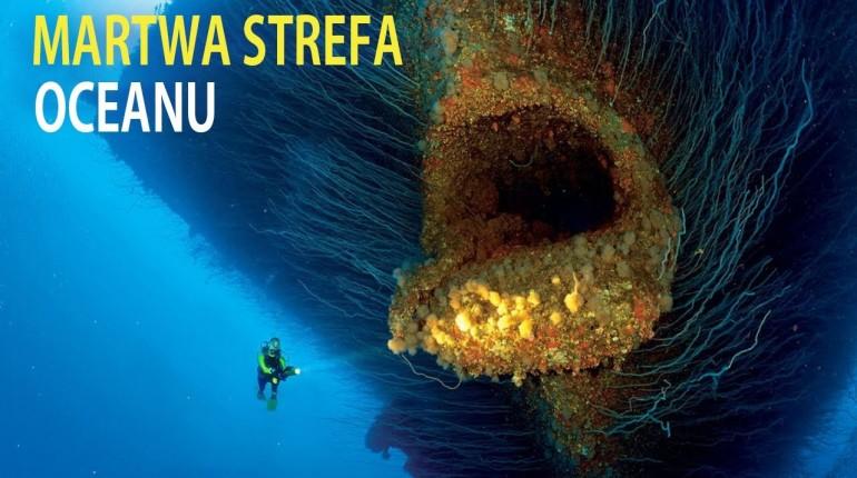 Kto zamieszkuje głębię oceanu?