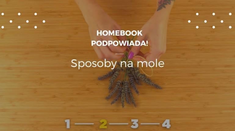 Skuteczne sposoby na mole #homebookpodpowiada