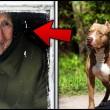 Kobieta uratowała bezdomnego psa, kilka tygodni później on uratował jej życie