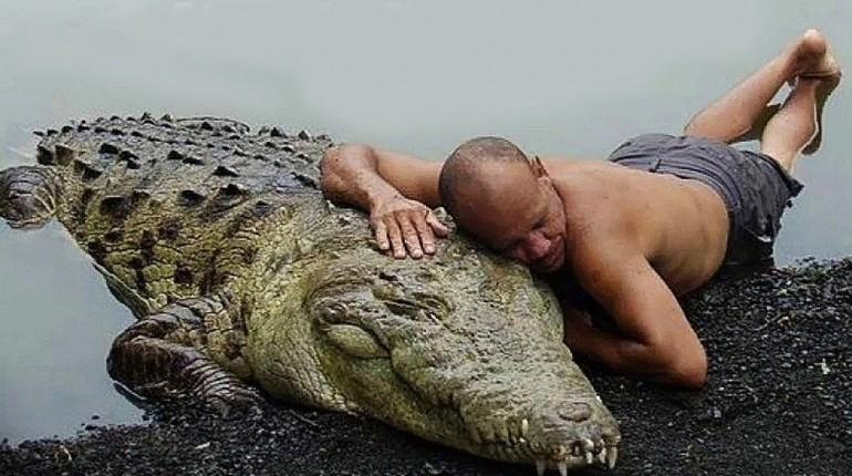 Niezwykłe Przyjaźnie Ludzi z Dzikimi Zwierzętami
