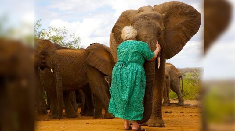 Słonie ustawiały się w kolejkę szeregu, żeby przytulić tę kobietę...