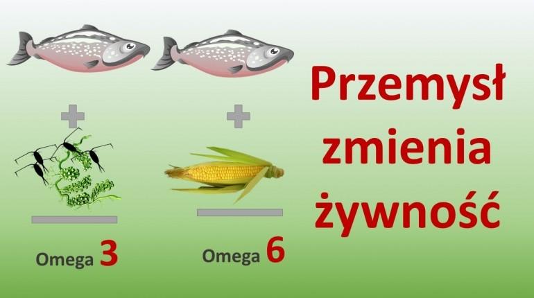 Kwasy Omega. Właściwe proporcje Omega 3 i 6.  Jak przemysł zmienia żywność?